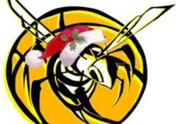 LogoSettoreGiovanile -Natale