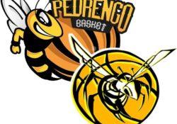 LogoPedrengoSenior-Junior minsize_rettangolare