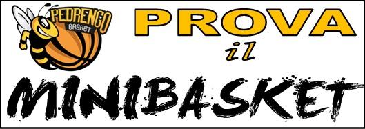 Prova il Minibasket!!